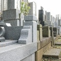 松戸市(千葉県)で人気の公営霊園・墓地ランキング7選!【価格|アクセス|口コミ】