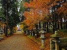 法巌寺 のうこつぼ 紅葉