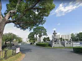 大阪市設 瓜破霊園 木と墓