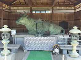 新善光寺 のうこつぼ 牛