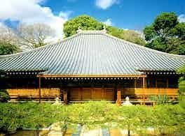 淨専寺 のうこつぼ 本堂