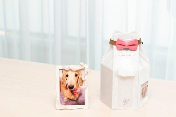 ペット用骨壷の人気・おすすめランキング8選!選び方や保管方法も解説