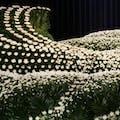 献花とは?選び方や金額費用、やり方のマナーを解説!献花料も