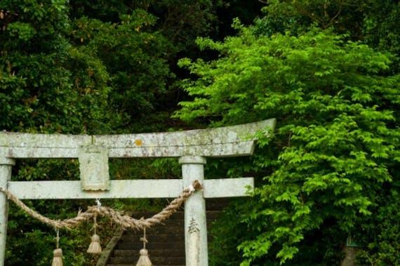神奈川県のお寺・神社おすすめ14選!大人向け旅行・観光・パワースポットランキング