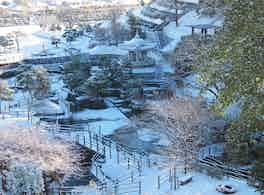 姫路市営 名古山霊苑 冬