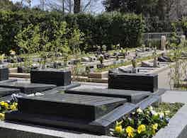 浄光苑 墓 裏