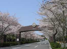 飯盛霊園(公営) 入り口
