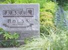 川越フォーシーズンメモリアル 永代供養墓・樹木葬「時のしらべ」 石