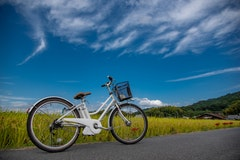 高齢者でも安全な電動自転車5選!選び方や金額相場も紹介!