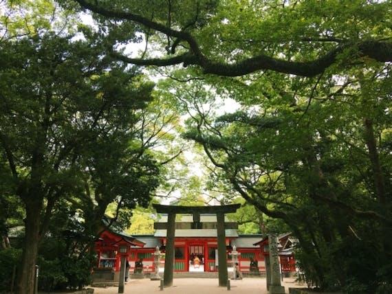 茨城県のお寺・神社おすすめ10選!大人向け旅行・観光・パワースポットランキング