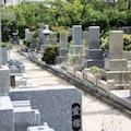 お墓の種類やデザインは?樹木葬や納骨堂、供養の種類と墓地形態も!