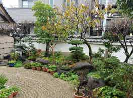 善福寺 のうこつぼ 庭