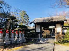 龍泉寺 のうこつぼ 正門