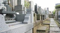 埼玉県の霊園・墓地11選!価格やアクセスを解説【一般墓|納骨堂|樹木葬別】