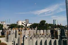 梅窓院は緑と梅が咲く人気寺院墓地!特徴や区画の詳細を解説!