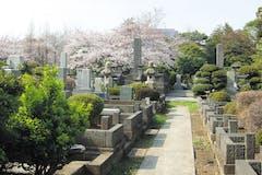 青山霊園は著名人も眠る価格400万円以上の高級霊園!応募方法も紹介