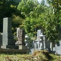 改葬・お墓の引っ越しの手順・費用を紹介!お墓の移動にトラブルは?