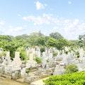 都立多磨霊園は納骨堂もある公園墓地!特徴や応募方法を紹介