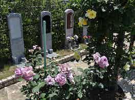美園桜ヶ丘 無量寺霊園 花