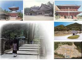 総本山金剛峯寺 高野山中之橋霊園 霊園風景
