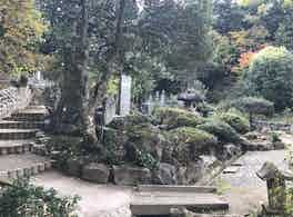 長照寺 のうこつぼ 草木